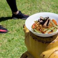 [4:4 Footwear Foodie] Adidas Yeezy Boost v2 + Portabello & Veggie Yakisoba Stir Fry